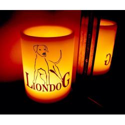 """Wax lantern """"Liondog"""""""